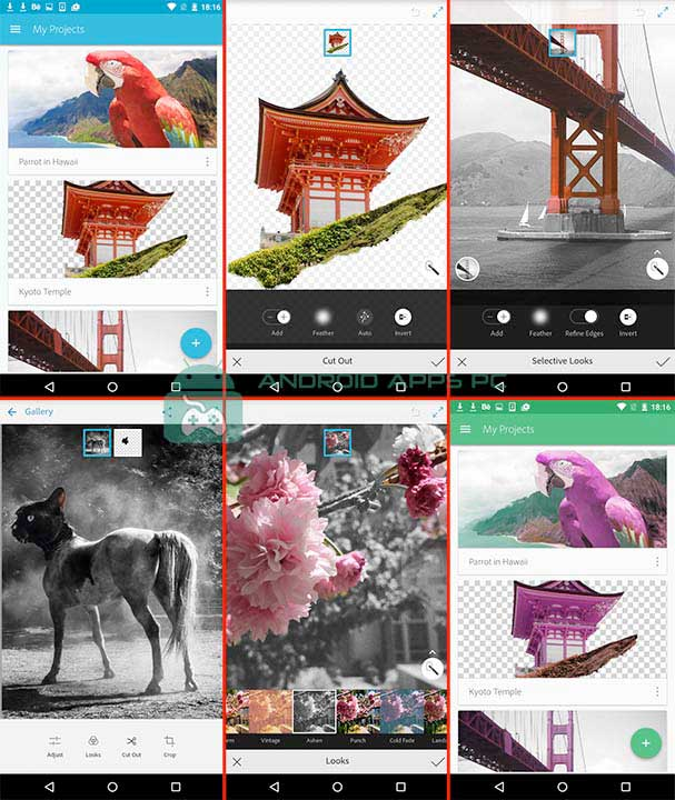 adobe editing photo for android and ios